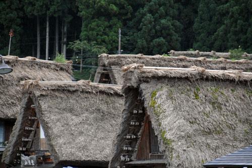 白川郷には100棟あまりの合掌造りの家屋がある