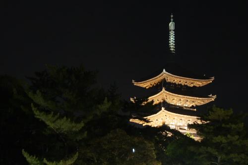 大阪、奈良の旅