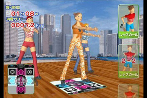 エアロビクスレボリューション (PS2)