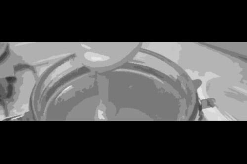 第62話:蜜の流れる地