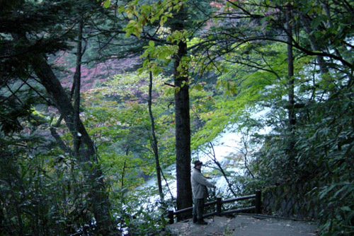 湯滝 / 急転落下の大瀑布