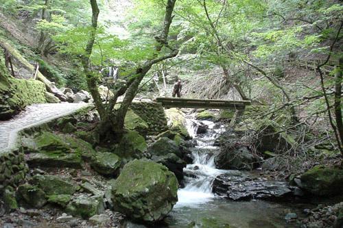 竜化の滝 / 岩場に隠された3段の滝