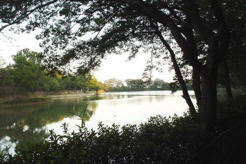 八丁湖公園 / 静かな散歩道