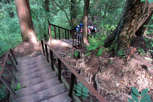 緑豊かな御岳山ハイキングコース