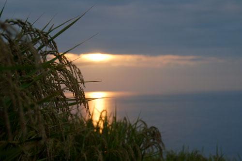 千枚田に沈まない夕陽