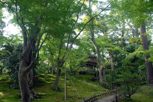 兼六園と金沢城公園