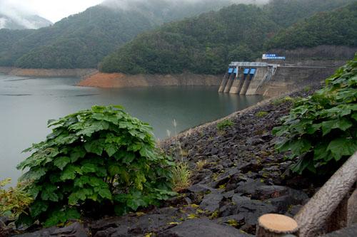 九頭竜ダムと虹の大橋