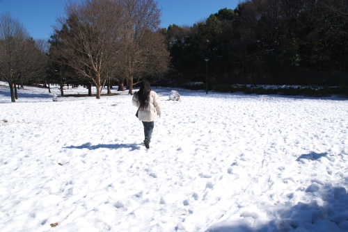 光が丘公園 / 2008年の雪景色