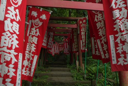 佐助稲荷神社 / 鎌倉アジサイ散歩(8/12)