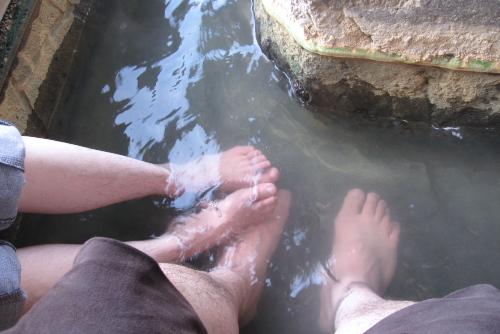 島原さらく・湧水めぐり