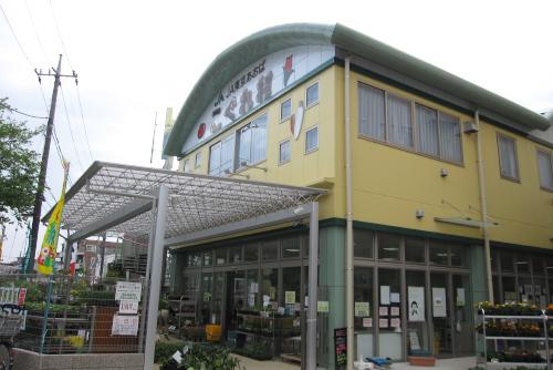 JA東京あおば ファーマーズショップこぐれ村 / 練馬野菜カレーと花わさびを買った