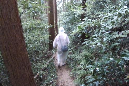 [ウォーキング] 第14回武蔵おごせハイキング大会